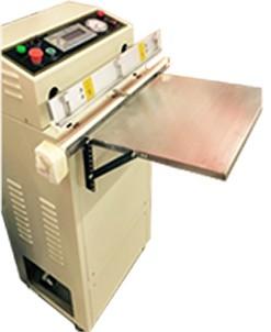 Seladora a vácuo WZ-VS600